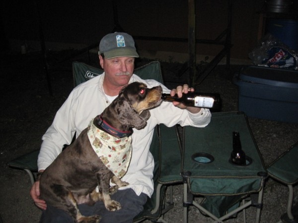 Bailey_the_beer_drinking_dog